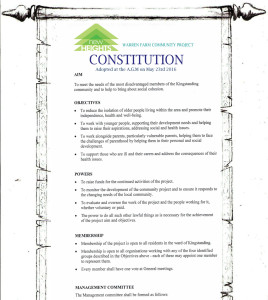 Constitution Scroll 1